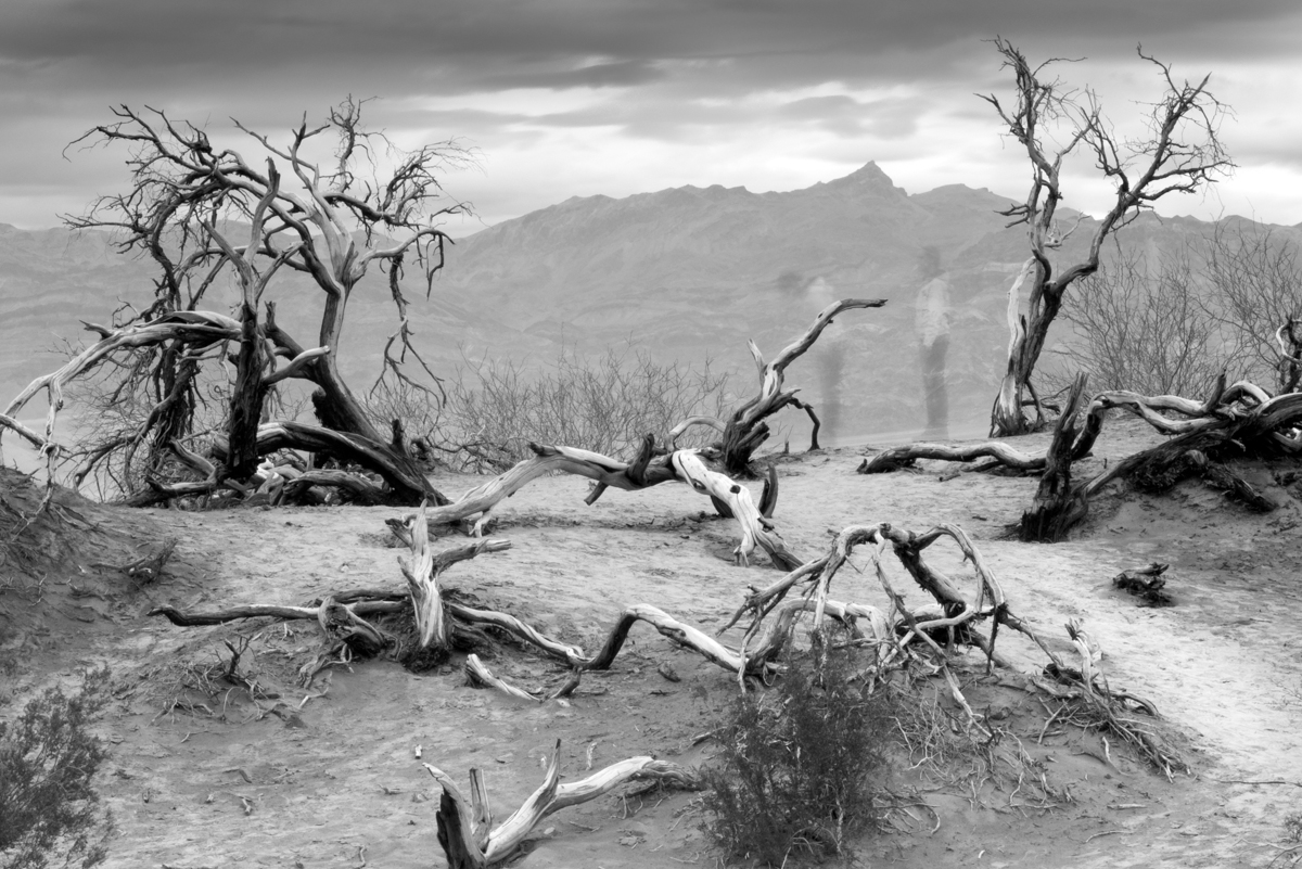 IMAGE: http://www.grahamclarkphoto.com/wp-content/uploads/2014/03/Sony-A7R-with-Canon-50mm-1.8-in-Death-Valley-Black-and-White.jpg